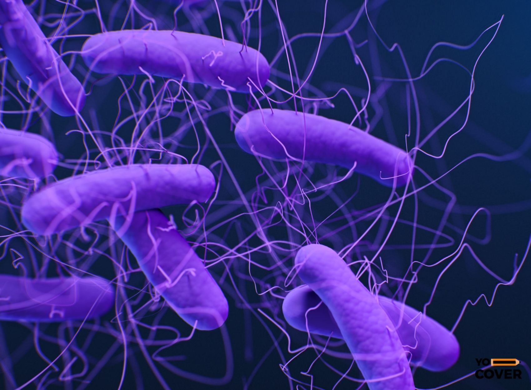 Interesting Facts about Bacteria